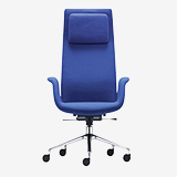 Fenix - Desk chairs (Office products)